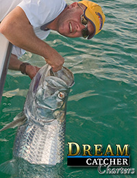Tarpon and angler