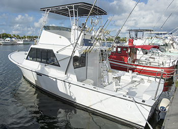 Deep Sea Fishing Key West