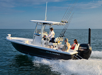 SeaHunt 22 BR